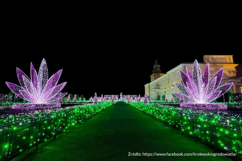 5 Królewski Ogród Światła 1
